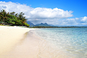 A Kaneohe Bay Beach